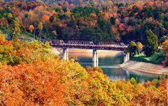 Take a train ride through North Carolina in the fall on the Great Smoky Mountain Railroad