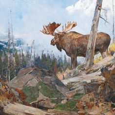 Rungius, one of the best moose paintings he did!