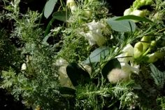 August Wedding British Wedding, August Wedding, Wedding Flowers, Plants, Plant, Planets, Bridal Flowers