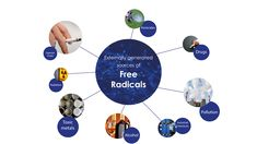 What are free radicals Heat Stress, Kangen Water, We Energies, Oxidative Stress, Animal Care, Our Body, Pet Care