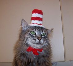 Cat In The Hat Hat For A Cat, Crocheted Dr. - Cat In The Hat Hat For A Cat, Crocheted Dr. Seuss Costume Do you want your cat to be a cat in a hat? Then this awesome hat and bow is just what you need. The hat is hand crocheted and it measures I Love Cats, Cool Cats, Baby Cats, Cats And Kittens, Cat Dressed Up, Pet Costumes, Halloween Costumes, Halloween Halloween, Cat Hat