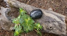 The Selfish Side to Charity – by Sabrina Fritts   The Magic Happens (TMH)
