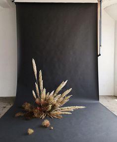 black backdrop with pampas grass arrangement.