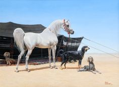 White arabian horse and saluki companions by Mary Haggard - Oil on canvas