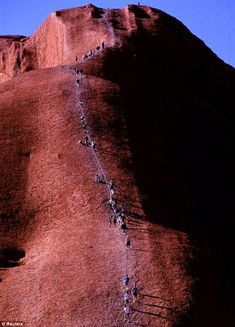 The strong at heart climbing Uluru. The aborigines are against these climbs as climbers have to cross a 'Dreamtime' track, which has spiritual significance. Some climbers freeze half way up and need assistance to get back down. Around 35 people have been killed on the climb since visitor records began.