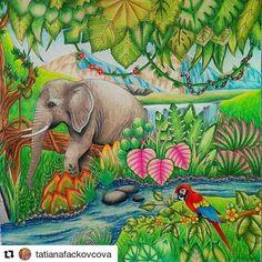 Ficou lindo demais! #Repost @tatianafackovcova with @repostapp #selvamagica #magicaljungle #magicaljunglecoloringbook #johannabasford #johannabasfordmagicaljungle #coloringforadult #coloringbookforadult #cololoring #adultcoloring #adultcoloringbook #elephant #antistresscoloringbook #prismacolor #jardimsecreto #prismacolorpremier