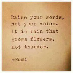 Raise your words not your voice.