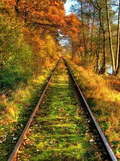 Autumn Rail, Bavaria