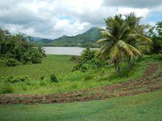 Lago Guayabal, Villalba, PR