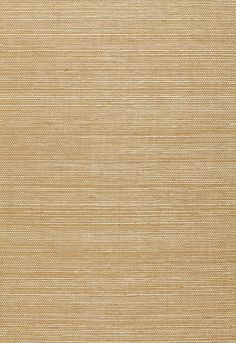 There are a ton of these sisal and grass cloth wallpapers that come in a million variations and colors. Can be dramatic or super neutral depending on the affect you want. Texture makes a neutral color more interesting