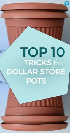 Here Are 10 Gorgeous Designer Tricks for Your Dollar Store Pots. Transform your dollar store pots into some spectacular! Here Are 10 Gorgeous Designer Tricks for Your Dollar Store Pots- Transform your dollar store pots into some spectacular! Cool Ideas, Dollar Store Hacks, Dollar Stores, Diy Blanket Ladder, Plastic Flower Pots, Belle Villa, Diy Headboards, Diy Garden, Garden Pots