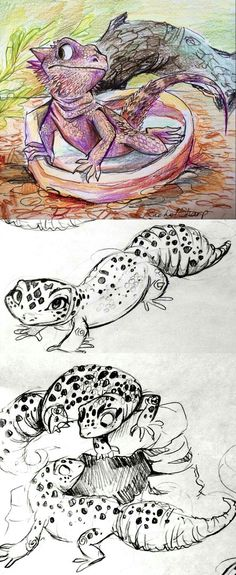 , Bearded Dragon and Leopard Geckos by on DeviantArt , I went to the Idaho Aquarium a few weeks ago and saw these reptiles. They were pretty cute and fun to watch. I love the fat tails on the leopard gecko. Bearded Dragon Habitat, Bearded Dragon Funny, Cute Reptiles, Reptiles And Amphibians, Sharpie91, Cute Lizard, Dragon Illustration, 1 Tattoo, Dragon Art