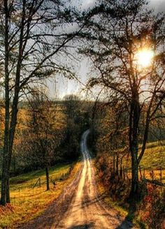 Country Dirt Roads. Best place to dream.