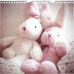 Morning. Teddy Bear, Toys, Life, Animals, Activity Toys, Animales, Animaux, Clearance Toys, Teddy Bears
