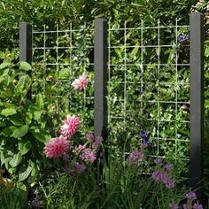 Gör enkla väggar med nät mellan stolpar! Näten finns i galvat och svart#trädgårdsinspiration #trädgårdsprodukter #trädgårdstips #insynsskydd