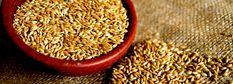 El Alpiste (Phalaris canariensis) es una de las semillas más alimenticias, contiene gran cantidad de enzimas siendo la más abundante; la lipasa que es la encargada de eliminar las grasas en exceso del cuerpo, posee una buena capacidad de recarga enzimática y gran contenido de proteínas, contiene tanta proteína como la carne, pero con aminoácidos estables, que se asimilan fácilmente y no dejan residuos tóxicos en el organismo. La semilla del Alpiste se encuentra conformada por un 16,6% de…