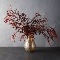 Dried Flower Arrangements, Dried Flowers, Table Arrangements, Dried Eucalyptus, Bouquet, Moss Wall, Outdoor Garden Furniture, Types Of Furniture, Flower Decorations