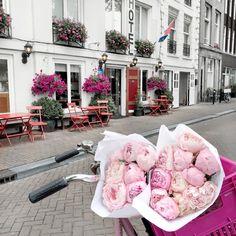 Peonies in Amsterdam by @polabur