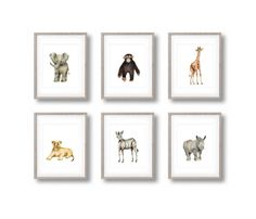 •• SET OF SIX SAFARI ANIMAL NURSERY PRINTS •• **Frames and mats are not included**  These prints from my original acrylic paintings are perfect for any nursery or childs room. This collection includes a baby elephant, giraffe, zebra, lion cub, rhino and monkey (please note: frames and mats are not included and logos will be removed).  If you would like to substitute a tiger cub for any of the animals in the set (shown in the last photo), please just let me know in the NOTES section at…