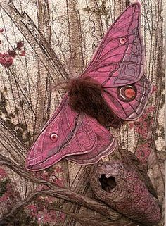 Pink Emperor Gum Moth ~ by Annemieke Mein; Wildlife Artist in Textiles Beautiful Bugs, Beautiful Butterflies, Beautiful Women, Beautiful Creatures, Animals Beautiful, Art Textile, Textile Artists, Butterfly Kisses, Pink Butterfly