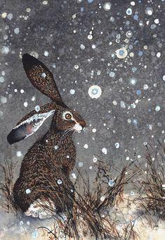 Lapin et étoiles aquarelle carte de voeux Le silencieux