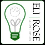 Take Your Blog to the Next Level with Eli Rose Social Media