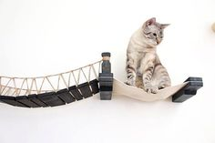 DIY Inspo--how to connect slats for Cat Mod Bridge #catsdiytree