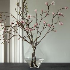 Magnolia branches placed in a vase add height and interest to a room