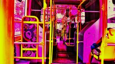 Color's Bus São Paulo - Brasil