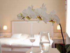 Genießen Sie Ihren Aufenthalt in einem unserer 9 Einzelzimmer oder 15 Doppelzimmer. Vase, Table Decorations, Furniture, Home Decor, Single Bedroom, Decoration Home, Room Decor, Home Furnishings, Vases
