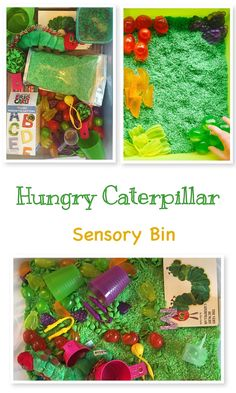 The very hungry caterpillar inspired sensory bin.
