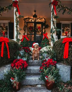 Cutie It's 17 days until Christmas Eve ——> for the countdown Photo credit: - Before After DIY Christmas Mood, All Things Christmas, Xmas, Santa Christmas, Christmas Lights Outside, English Christmas, Classy Christmas, Cottage Christmas, Christmas Villages