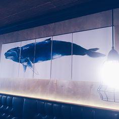 How Do Whales Sleep?