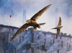 paintings of swifts - Google Search
