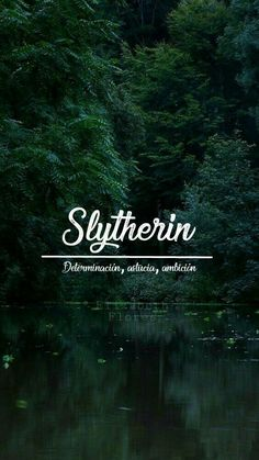 Slytherin Wallpaper Wallpaper of Slytherin Fondo de pantalla de Slytherin #wallpaperforyourphone Slytherin Wallpaper Wallpaper of Slytherin Fondo de pantalla de Slytherin