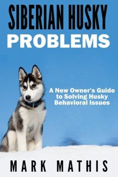 Siberian Husky: Dog Behavior Problems: How to Raise a Well Behaved Siberian Husky Siberian Husky Puppy Training Guides Volume 2 ** More info could be found at the image url. (This is an affiliate link and I receive a commission for the sales) Siberian Husky Training, Siberian Husky Facts, White Siberian Husky, Siberian Husky Puppies, Husky Mix, Husky Puppy, Siberian Huskies, Husky Humor, Funny Husky Meme