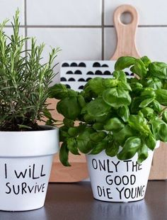 Love this ** planters...