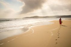A walk on the Beach is worth a Thousand Words_     -- Anonymous