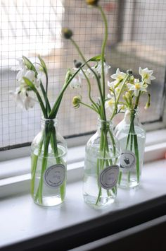 Creative DIY floral arrangements with Chelsea from Frolic! blog.