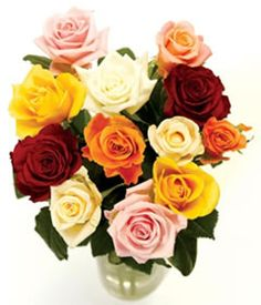 postarose 12 classic mixed roses 12 classic mixed rose bouquet http