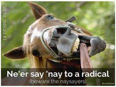 Jodi Olden @JodiMOlden My slide about the nay-sayers #SHCR pic.twitter.com/kuNkgEAROa