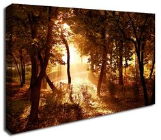 Simply Canvas have a great variety of canvas wall prints. Abstract wall art from only Wall Prints, Canvas Art Prints, Canvas Wall Art, Abstract Canvas Art, Sunset, Outdoor, Products, Sunsets, Outdoors