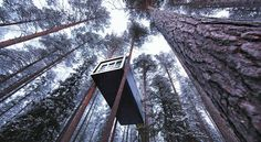 Read the Treehotel, Swedish Lapland hotel review on Telegraph Travel. See great photos, full ratings, facilities, expert advice and book the best hotel deals.