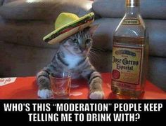 Moderation - http://www.drunkdrank.com/drink/moderation/