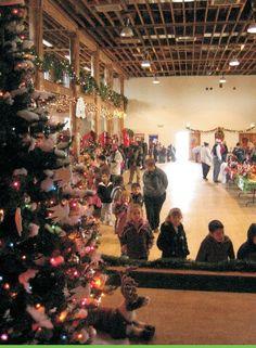 Christmas Land inside the Dr Saul Community Center Dr Saul, Christmas Tree, Community, Concert, Holiday Decor, Teal Christmas Tree, Holiday Tree, Recital, Xmas Tree