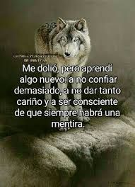 Imagen relacionada Wolf Quotes, Sad Quotes, Life Quotes, Cheer Up Quotes Funny, Motivational Phrases, Inspirational Quotes, Jenny Rivera Quotes, Shadow Wolf, Quotes En Espanol