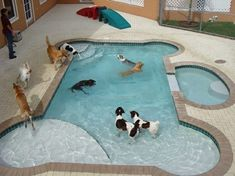 Technically the pool is theirs - so why not?