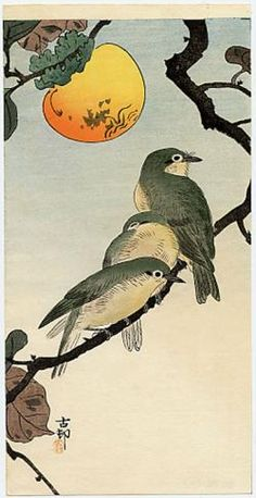 Koson  Three Siberian Blue Robins on a Persimmon Branch