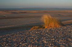 image de la Baie de Somme près de cayeux et le hourdel