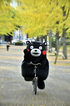 くまもん Pure joy! https://www.pinterest.com/kazoga/yurukyara/?utm_campaign=activity&e_t=16549f644c2a4515802ae70ef111df76&utm_medium=2003&utm_source=31&e_t_s=board